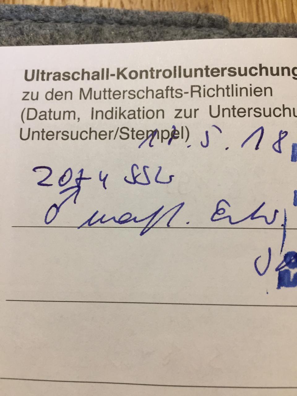 Niedlich Wie Schwer Ist Die Anatomie Und Physiologie 1 Ideen ...