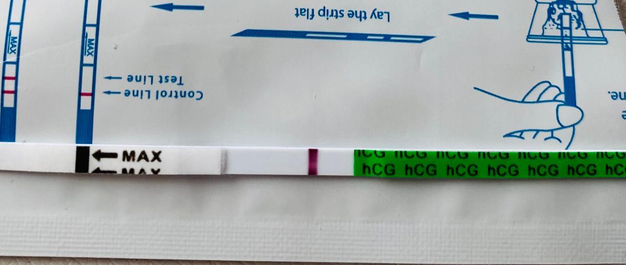 Es+15 Test Negativ