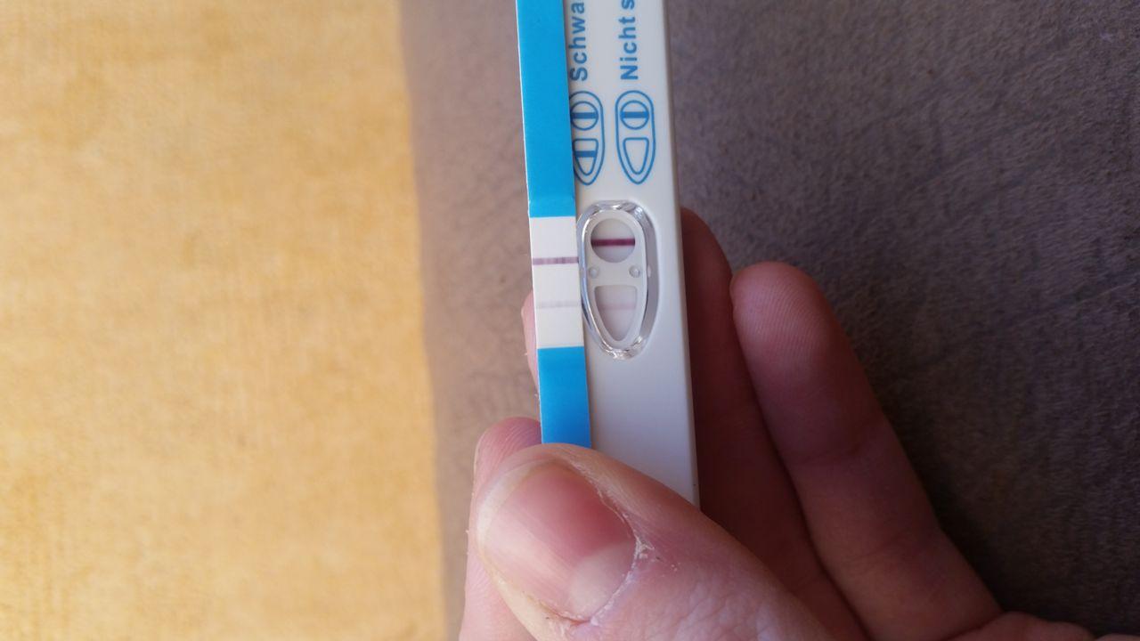 Schwangerschaftstest querstreifen