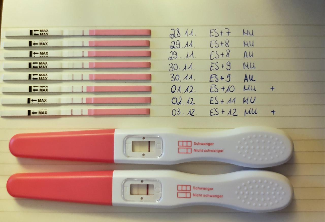 Schwangerschaftstest Abends Machen