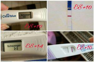 Einnistungsblutung ss test nach WANN Ss