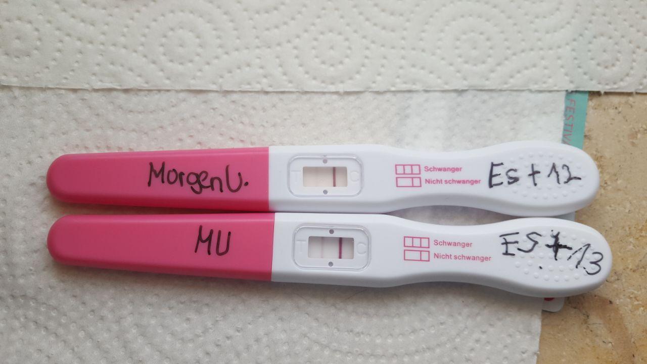 Presense Schwangerschaftstest Anleitung