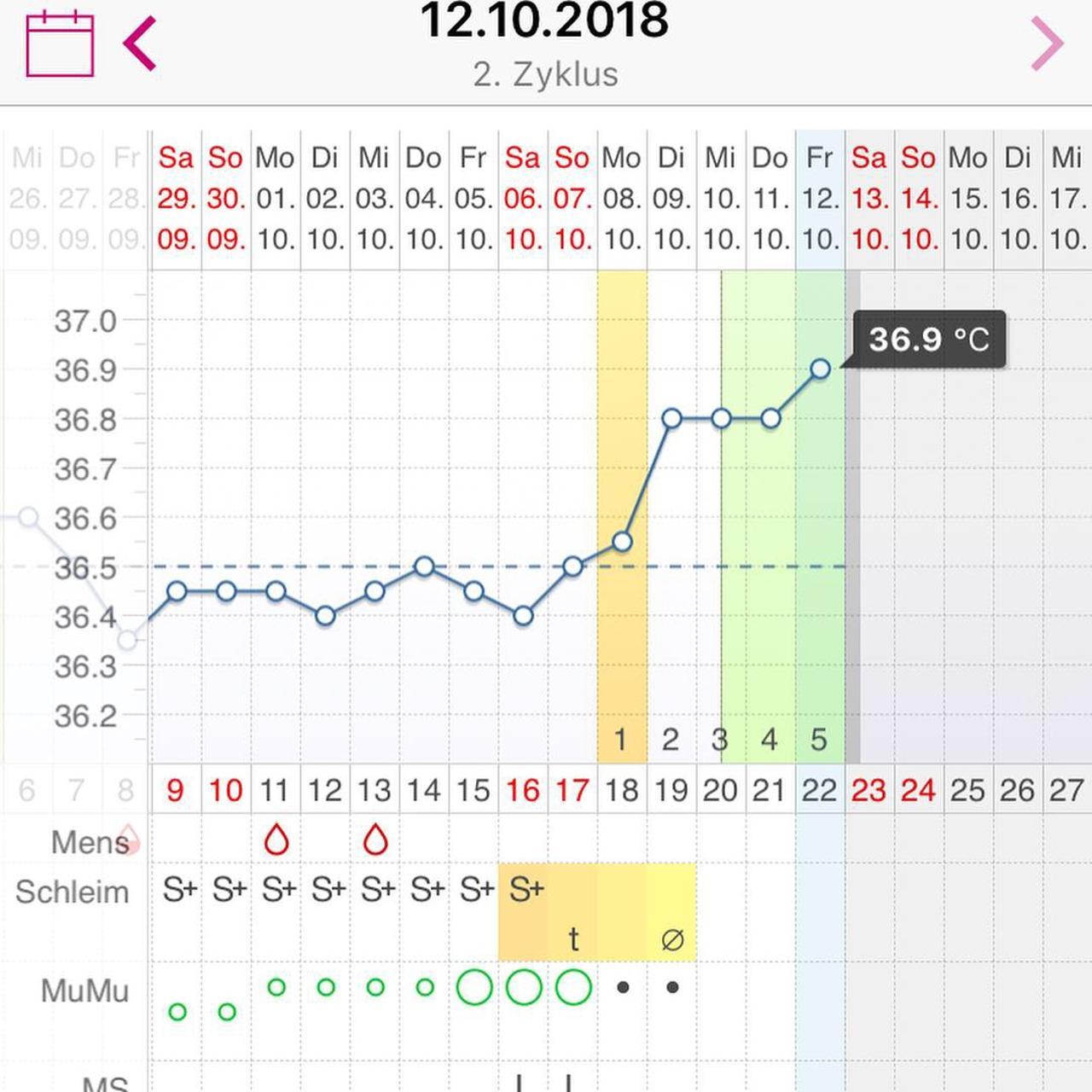 Temperatur Sinkt Vor Nmt Trotzdem Schwanger